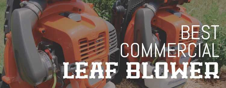 Photo of Commercial Leaf Blower