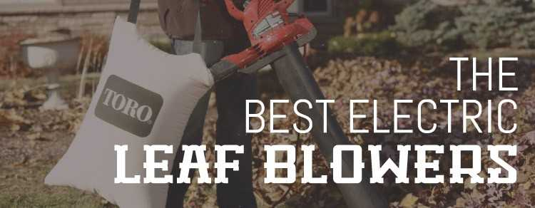 Photo of Best Electric Leaf Blower 2020 Reviews & Buying Guide