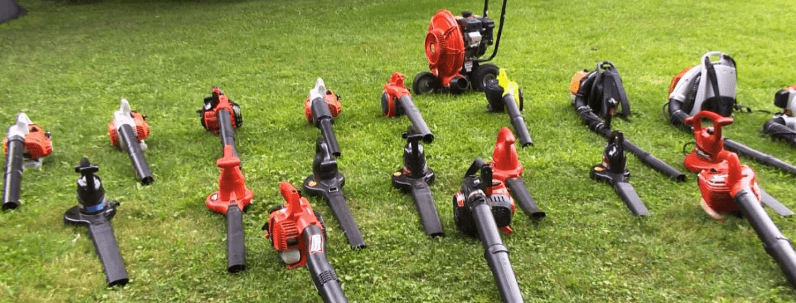 Photo of Battery Leaf Blowers